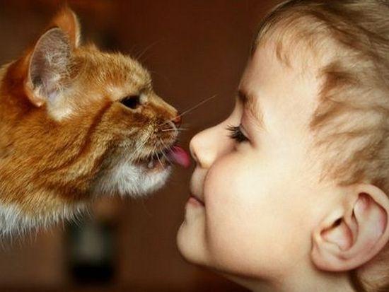 Советы по выбору домашних животных для детей
