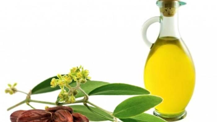 Чем полезно масло жожоба?