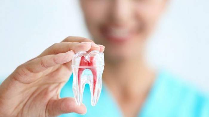 Стоматология в Харькове «Dental Union Studio»: преимущества сотрудничества