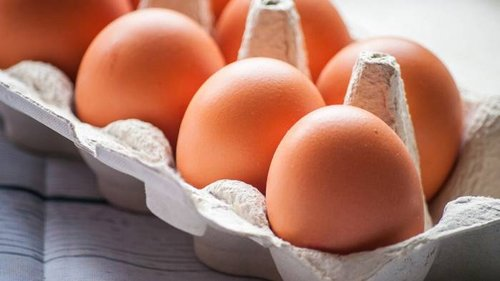 Дезинфекция сырых яиц по всем правилам