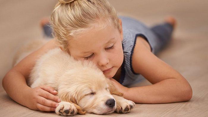 Если домашние животные любят спать в твоей постели, обрати внимание на это