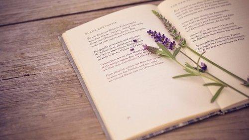 10 захватывающих книг, которые стоит прочитать каждой женщине