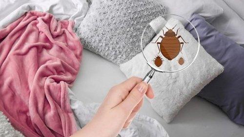 Что молодым хозяйкам нужно знать о стирке подушек