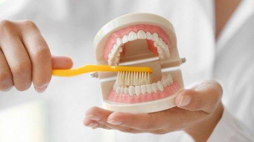 Уход за зубными протезами для начинающих