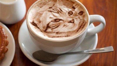 Как создаются рисунки на поверхности кофе