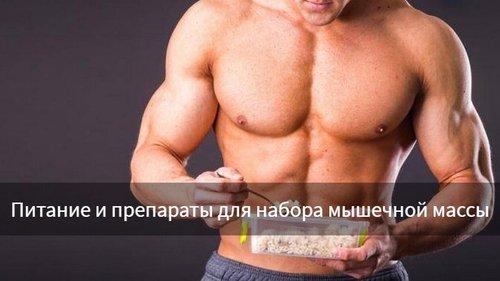 Препараты для набора мышечной массы: панацея или эффективное дополнени...
